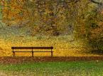 """macieknowak """"Jesienna ławka"""" (2011-11-02 16:50:45) komentarzy: 4, ostatni: Czeka :)"""