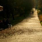 """Zeny """"Jesienna impresja z białym pieskiem"""" (2011-11-07 09:49:26) komentarzy: 41, ostatni: :)"""