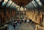 """f a b r o o """"Natural History Museum"""" (2011-11-08 11:44:59) komentarzy: 38, ostatni: no... i ta para tak jakos mocno zwraca tu na siebie uwagę... mz :)"""