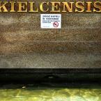 """miastokielce """"""""Plac Artystów"""" Kielce"""" (2011-11-15 10:29:48) komentarzy: 2, ostatni: krokodyla widać :)"""