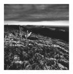 """Chytła """"Bieszczady"""" (2011-11-16 19:47:53) komentarzy: 4, ostatni: niebanalne foto krajobrazu"""