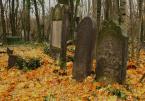 """asiasido """"Kirkuty 7"""" (2011-11-26 20:44:50) komentarzy: 11, ostatni: niezłe..:)"""