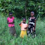 "Meller ""Pożegnanie z Afryką"" (2011-11-29 15:17:31) komentarzy: 2, ostatni: BDB"