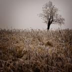 """K_rzychu """""""" (2011-11-29 20:16:45) komentarzy: 5, ostatni: Elegancko, troszku ciasno..."""