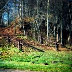 """ennio """""""" (2011-12-06 11:04:44) komentarzy: 1, ostatni: O witam ... długo  czekano ..."""
