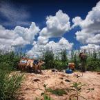 "Meller ""Osada Rybacka.. Tanzania"" (2011-12-15 07:07:03) komentarzy: 10, ostatni: a, no chyba, że tak:)"