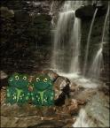 """Miras40 """"Mosorne..."""" (2011-12-20 22:54:38) komentarzy: 26, ostatni: Lubię te żabki, cieszą mnie :-)"""