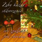 """Zeny """"Wesołych Świąt!"""" (2011-12-23 13:09:50) komentarzy: 36, ostatni: wzajemnie"""