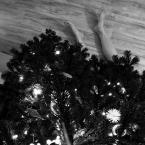 """Zeny """"Wesołych Świąt!"""" (2011-12-23 20:16:53) komentarzy: 23, ostatni: cocacola[ 2011-12-24 00:19:04 ] Spodziewam się, że będzie więcej... :D"""