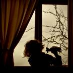 """monikha """"marzenia"""" (2012-01-06 23:38:50) komentarzy: 14, ostatni: świetne"""