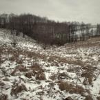 """choraw """"Miejsce"""" (2012-01-15 23:30:11) komentarzy: 14, ostatni: fajna seria"""