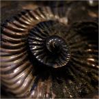 """barszczon """"stąd - do wieczności..."""" (2012-01-17 16:07:13) komentarzy: 15, ostatni: interesujące, mam skojarzenie z twórczością Gigera"""