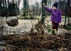 """Zbigniew Woźniak """"Nazajutrz"""" (2012-01-17 21:01:04) komentarzy: 40, ostatni: Samo życie..."""