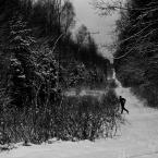 """Zeny """"z cyklu w lesie"""" (2012-01-18 18:09:51) komentarzy: 3, ostatni: maciey k[ 2012-01-18 19:51:12 ] Oj tak - to powszechne zjawisko... :D"""