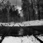"""Zeny """"z cyklu w lesie"""" (2012-01-18 18:33:40) komentarzy: 12, ostatni: camp[ 2012-01-21 10:09:37 ] Dzięki..."""