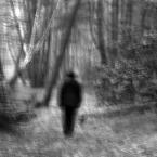 """maniek38 """"..jesiennie."""" (2012-01-21 14:24:16) komentarzy: 2, ostatni: Dobre"""