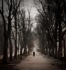 """arche """"Subiektywne emocje"""" (2012-02-07 11:38:22) komentarzy: 29, ostatni: to też, bardzo gadają do mnie takie niedoskonałości, nieostrości, niedopowiedzenia..."""