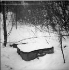 """love_ridden """"Martwa natura"""" (2012-02-07 18:59:47) komentarzy: 3, ostatni: całkiem spoko. arsat też niczego sobie :)"""
