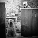 """slawecki """"..."""" (2012-02-19 23:07:52) komentarzy: 7, ostatni: poleconego gratuluję, to wciąż moje ulubione zdjęcie:)"""