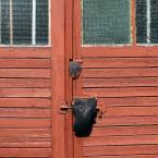 """miastokielce """"Ul. Kasztanowa; Kielce"""" (2012-02-29 11:15:31) komentarzy: 4, ostatni: takie sadomaso jest."""