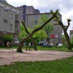 """miastokielce """"Ul. Św. Stanisawa Kostki; Kielce"""" (2012-03-06 20:47:52) komentarzy: 2, ostatni: gole ale i wesole."""