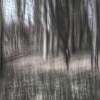 """adamix69 """"..."""" (2012-03-10 21:27:49) komentarzy: 3, ostatni: ...szkic węglem... Podoba się... Pozdrawiam"""