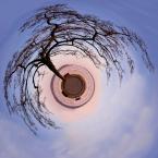 """andzej n. """"Drzewo Na Planecie Zegrzyńskiej"""" (2012-03-18 13:54:19) komentarzy: 6, ostatni: jest trochę zabawy no i nie każdy daje sobie radę z narożnikami, a tu jest ładnie:)"""