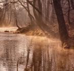 """Katarzyna Gritzmann """"złota rzeka"""" (2012-03-25 10:44:18) komentarzy: 15, ostatni: wspaniałe"""