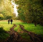 """dreptaq """"wspólną drogą"""" (2012-03-28 21:24:22) komentarzy: 3, ostatni: ładny jesienny wieloplanowy kadr:), parka dobrze się tu komponuje:)"""