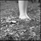 """love_ridden """"Half a World Away"""" (2012-03-31 11:20:20) komentarzy: 1, ostatni: sorki, ale nie widzę w tym obrazku nic, kompletnie nic...."""