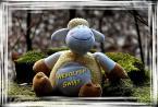 """jolka630 """"Wesołego Alleluja"""" (2012-04-06 12:20:49) komentarzy: 7, ostatni: Niech Ci słonko zawsze świeci,i niech czas radośnie leci! Pozdrawiam :)"""
