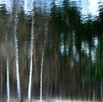 """asiasido """"drzewa 3"""" (2012-04-17 12:37:10) komentarzy: 6, ostatni: :D Podoba się! :))"""