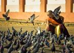 """wizental """""""" (2012-04-19 22:28:42) komentarzy: 5, ostatni: egzotyka i ... gołębie... ciekawe:)"""