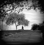 """slw """"..."""" (2012-05-08 23:03:07) komentarzy: 1, ostatni: lubię psychodeliczne klimaty, i psy pływajace w trawie"""