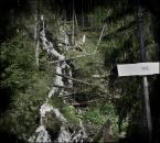 """sllonko """"w...Wodospad Celuj"""" (2012-05-09 22:15:05) komentarzy: 19, ostatni: :)))"""