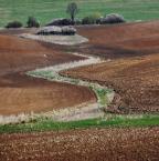 """asiasido """"słowackie pola"""" (2012-05-10 20:42:32) komentarzy: 19, ostatni: fajnie zakręcone"""