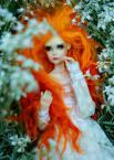"""mm_milena """"white dreams"""" (2012-05-29 00:06:20) komentarzy: 1, ostatni: ładny """"pomarańcz"""""""