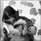 """MartaW """"pies swojej pani"""" (2012-06-04 21:58:54) komentarzy: 8, ostatni: +++++++"""