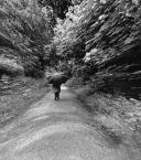 """f a b r o o """"walk away"""" (2012-06-09 15:24:05) komentarzy: 11, ostatni: zgadzam sie coraz bliżej...tylko innego celu :-)))"""