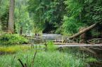 """newuser """""""" (2012-06-14 13:40:46) komentarzy: 2, ostatni: przypominają mi się coroczne spływy Brdą"""