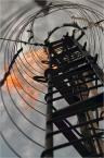 """barszczon """"świeczka"""" (2012-06-26 15:12:44) komentarzy: 4, ostatni: fotograf piękna[ 2012-06-26 15:38:03 ] to jest myśl - można się połozyć pod drabinką :) Spróbuję przetestować w przyszłym roku (odpukać) - o ile świeczka jeszcze będzie się palił i pogoda będzie odpowiednia :)"""