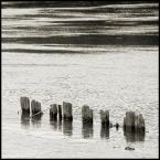 """BALTORO """"*"""" (2012-06-26 16:48:00) komentarzy: 1, ostatni: ujecie klasyczne.... prawie...."""