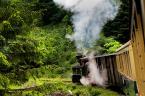 """Slawekol """"Wsiąść do pociągu..."""" (2012-07-08 21:31:18) komentarzy: 11, ostatni: ... oraz np linia Zittau - Oybin, przewspaniała"""