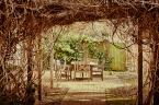 """witek_s """"zaczarowany ogródek"""" (2012-07-10 13:59:46) komentarzy: 3, ostatni: zapragnęłam herbaty patrząc na to zdjęcie:) przyjemnie...przyjemne miejsce..."""
