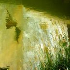"""Anavera """"letnia impresja"""" (2012-07-20 00:18:23) komentarzy: 7, ostatni: Twoje impresje zawsze powodują u mnie uśmiech ;))"""
