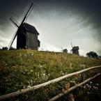 """DELF """""""" (2012-07-23 10:49:51) komentarzy: 14, ostatni: łapacze chmur i marzeń :)"""