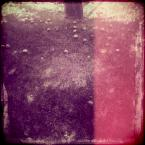 """kamron """""""" (2012-07-24 21:23:07) komentarzy: 8, ostatni: miazdży"""