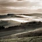 """Przemek_Turzyniecki """"Pola Pola"""" (2012-08-10 16:15:29) komentarzy: 7, ostatni: Porażająco piękny obraz."""