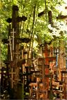 """barszczon """"magia pozytywnej Wiary..."""" (2012-08-14 11:45:40) komentarzy: 18, ostatni: warto tam pojechać - zarówno w czasie największego Święta, jak i w """"dzień powszedni"""" :)"""