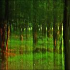 """enoa """"...grasz w zielone?... I"""" (2012-08-15 22:57:35) komentarzy: 17, ostatni: ...kankai - oby jak najszybciej :) ... WROCu - dziękuję..."""